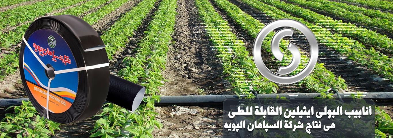 slider4-arabic