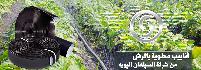 slider5-arabic